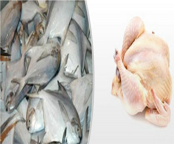 Chicken_Fish2
